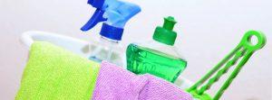 Entreprise de nettoyage biologique 65